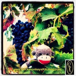 Sockmonkey in grapes