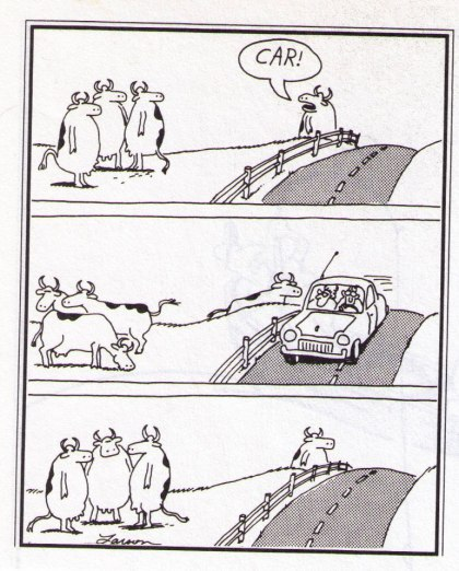 far side: Car