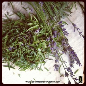 Hold the top of a sprig of lavender with your left hand, and with your right hand, loosely pinch the top. Pull downward on the stem with your right hand and all of the leaves and flowers will easily fall off of the stem. Repeat with more sprigs until you have one fully packed cup.